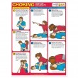 Anatomical World Wide Choking First Ald For Adults Laminated Chart