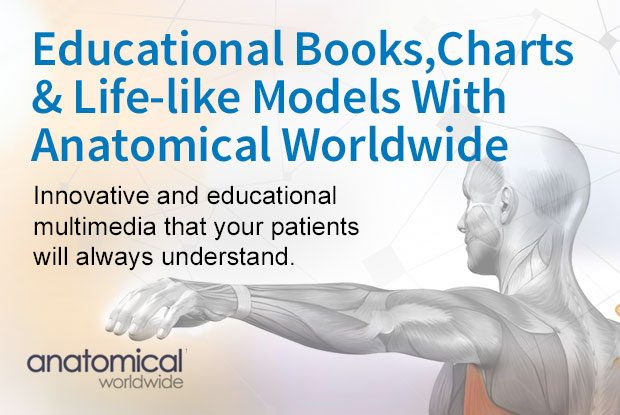 Anatomical Models, Books and Charts
